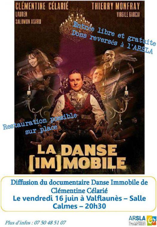 Affiche Danse immobile - diffusion le 16 juin à Valflaunès